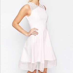 Ted Baker Mesh Eleese Dress in Baby Pink